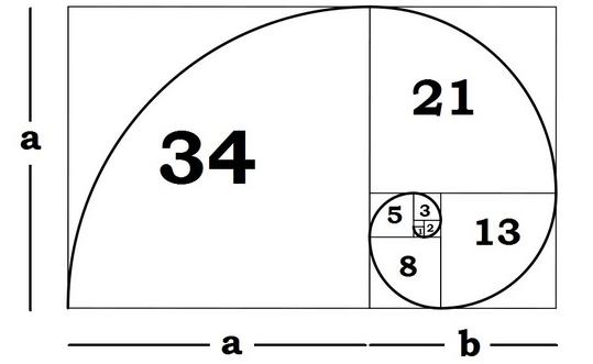 Fibonacci – Blackbox Software Solutions